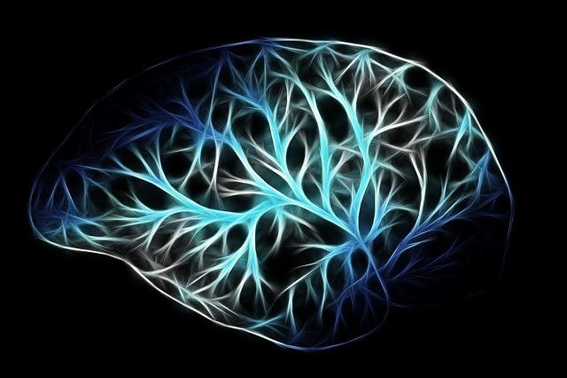 thinking brain-2676370_640
