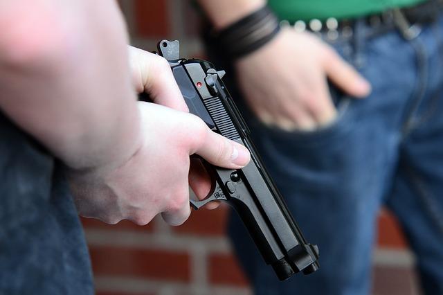 gun school