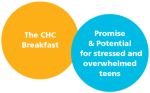 Promise and Potential for stressed and overwhelmed teens