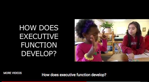 executivefunctionvideostill07