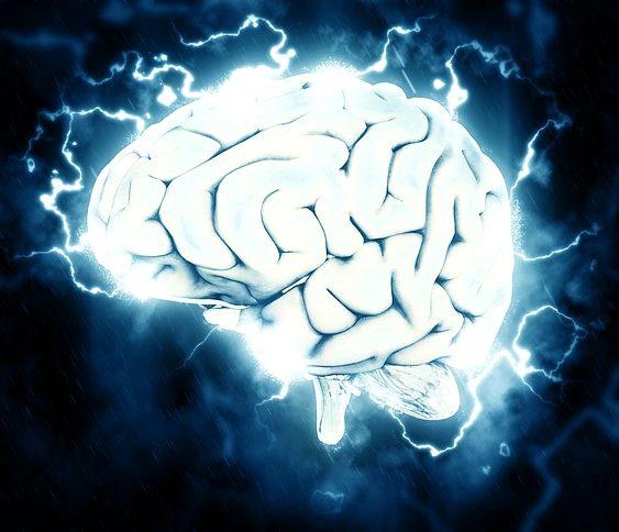 brain91