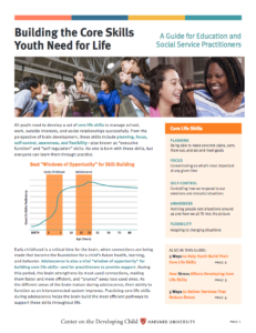 A Harvard University Guide To Executive >> Building The Core Skills Youth Need For Life A Guide For