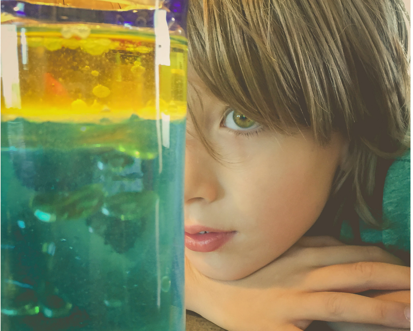 Young boy looking into an aquarium
